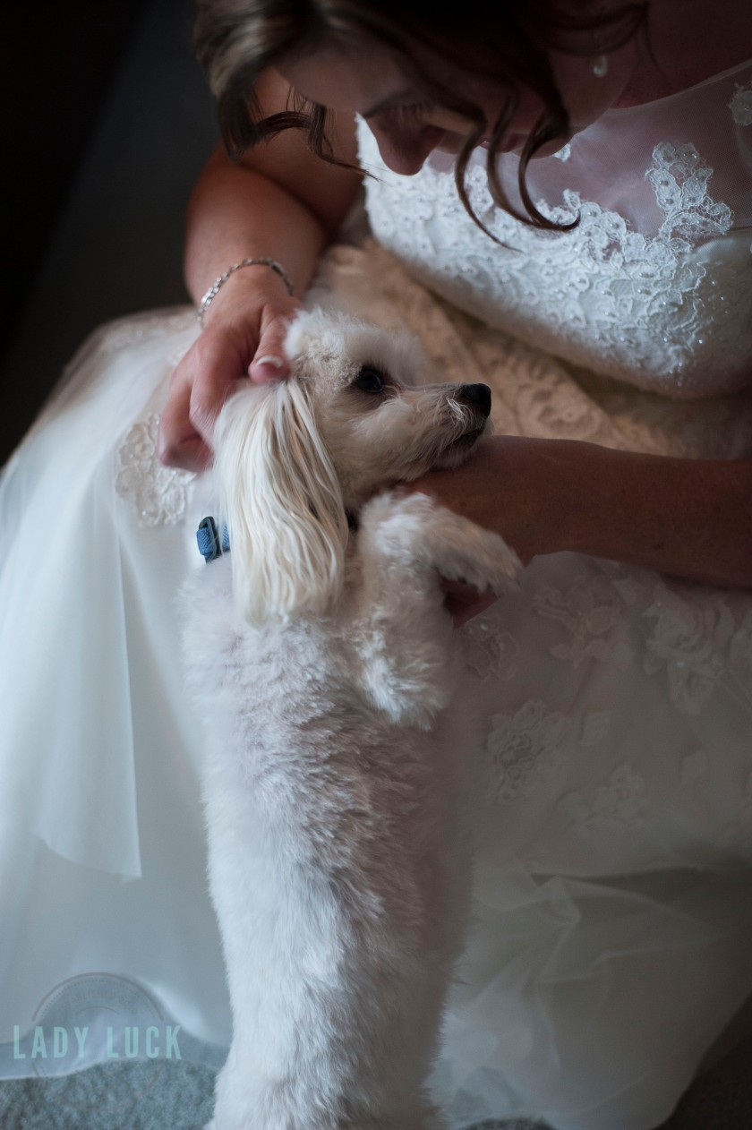 bride-snuggling-with-her-little-dog